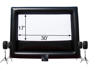 30'x17' Screen Set-up w/ Technician