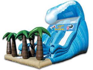 Catch A Wave 27' Slide